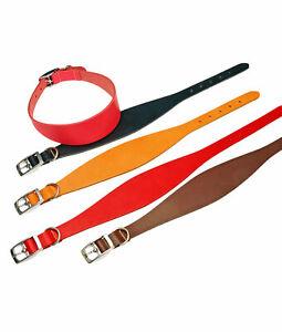Hound, Whippet, Greyhound & Lurcher UK Quality Leather Collar