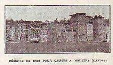1928  -  RESERVE DE BOIS POUR CAISSES A MOUSTEY  LANDES