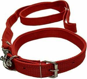 Indian Dog Neck Collar Belt and Leash Set , Red , Medium, Dog Harness,