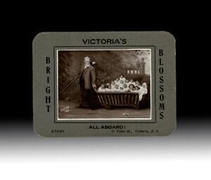 [Vavcouver Island, E.J. Eyres Photo] Victoria's Bright Blossoms - All Aboard!