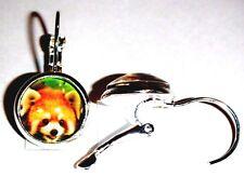 Ohrringe Katzenbär Tiere Damen Hänger Leverback Ohrschmuck Modeschmuck Glas Rund