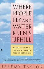 Where People Fly and Water Runs Uphill: Using Dreams to Tap the Wisdom of the Un