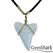 Modern Great White Shark Tooth Necklace 1.4'' Pendant 14 K gold plating Chain