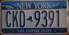 Targa Americana NEW YORK CKD 9391 THE EMPIRE STATE 31x16 cm - Più basso di EBAY
