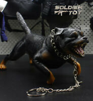 """High Quality 1/6 Scale Roaring Rottweiler Dog Yell Model for 12"""" Action Figure"""