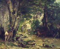Return of the Deer to the Stream Gustave Courbet Painting Print on Canvas Small