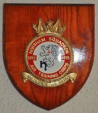 1015 Horsham Squadron Air Training Corps plaque crest shield ATC RAF Cadets