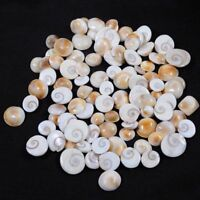 100% Natural Holy Gomti Chakra 9 mm -15 mm Ring Size Gemstone Lot Best Offer