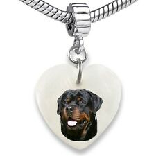 Rottweiler Dog Heart Dangle Mother Of Pearl European Bracelet Charm Bead EBS307