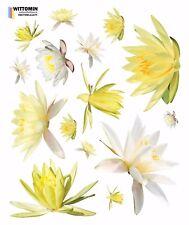 Aufkleber Sticker Wandsticker Wandaufkleber Blumen Lila Lily Seerose Fenster Bad