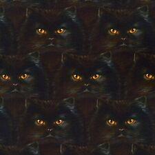 Stoff Baumwollstoff Robert Kaufman Whiskers & Tails Katzen schwarz
