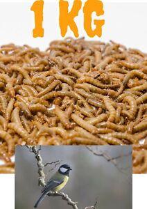 Mehlwürmer lebend 1 kg lebende Futterinsekten 1000g 1kg Futtertiere für Vögel