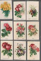 1913 ITC Garden Flowers Tobacco Silks Complete Set of 50