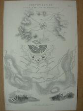 Antico 1880 Vittoriano Stampa FORTIFICAZIONE-Attacco e difesa delle fortezze