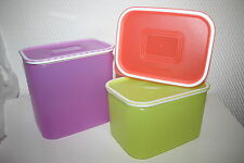 Tupperware  - Quadro-Set (3) - SONDERAUSGABE - NEU/OVP