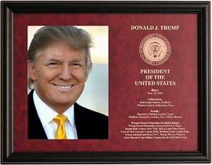 Donald Trump President of the United States framed & engraved photo plaque #5