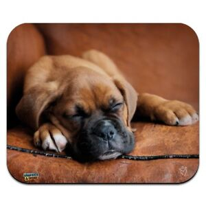 Boxer Puppy Dog Sleeping in Leather Chair Low Profile Thin Mouse Pad Mousepad