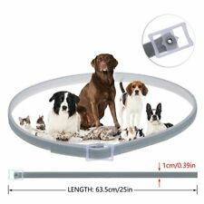 New listing Adjustable Flea and Tick Collar for Small Medium Large Dog 8 Month