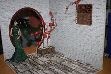 Doll house Room Box  Flagged Yard~ Scale 1:6 Pullip Blythe Momoko Monster Barbie
