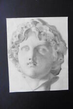 FRENCH SCHOOL 19thC - STUDY CLASSICAL SCULPTURE - HEAD YOUNG GREEK - CHARCOAL