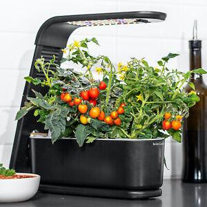 AeroGarden Sprout Black 3-Pod Garden + 3 Pod Seed Kit