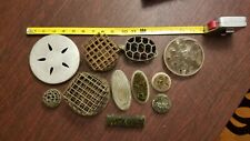 Lot Of 11 Vintage Metal Flower Frog Dome Wire & Spikes & Turtle & Glass