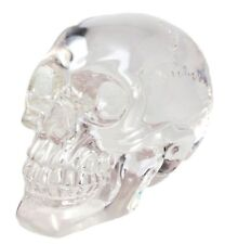 "6.5"" Long Clear Acrylic Resin Translucent Human Skull Figurine Halloween Decor"