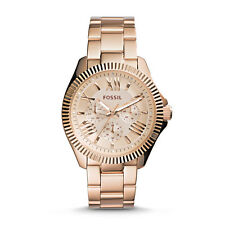 Fossil W's Cecile's fine lines and classic curves were inspired by modern AM4569