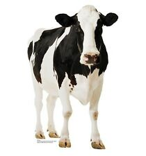 """CATTLE: BLACK &WHITE COW Standing.ONE 16 inch Fabric Panel to Sew. Pic 8"""" x 11""""."""