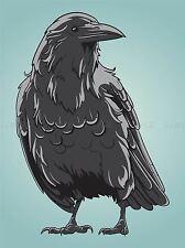 Illustrazione Uccello Crow RAVEN ROOK Becco Piume poster art print ve046a