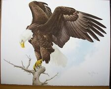American Bald Eagle Print  Glen Loates Signed Numbered Reduced $1000.00