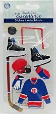 Sandylion Essentials 3d Dimensional Stickers Hockey Net Puck Sticks Goalie