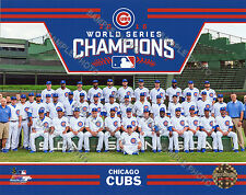 11X14 Chicago Cubs 2016 World Series Champions Sit Down Enlarged Team Photo