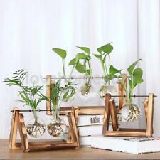 3pcs Clear Hanging Glass Beaker Shape Vase Flowers Plant Pot with Wood Tray