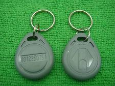 2p Gray 125Khz RFID Proximity ID Identification Token