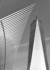 One World Trade Center, New Black & White, Size 5 X 7, White Matted 8 X 10