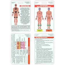 Mini Burn Set Vertical Badge Cards - 4 cards - Nurse Paramedic EMT RN EMS Medic