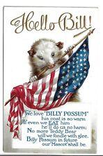 We Love Billy Possum Us Flag Poem Cute Artwork Postcard Type A For William Taft