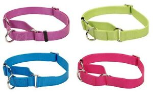 Adjustable No Slip collar for dog XXS to L 4 colors High quality