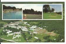1992 The New TAMARACK Lodge Golf Tennis Greenfield Park New York Postcard NY