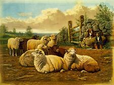 PAINTINGS AGRICULTURAL LANDSCAPE SHEEP DOG FARM PASTURE ART POSTER PRINT LV2993