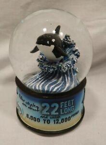 Sea World Musical Snow Globe - Orca - Killer Whale New In Box!