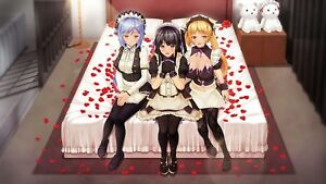 Custom Maid 3D2 Act.2 Windows Adult Pc Game Kiss Additional Elements New F/S