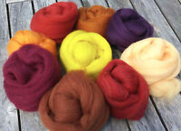 4 oz Autumn Fall 9 color Merino Wool top Sampler Pack - Spin, Felt, Crafts FAST
