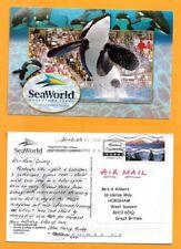 USA  -ORLANTO   POSTCARD STAMP  SEAWORLD -ADVENTURE PARKS -ORCA WHALE -