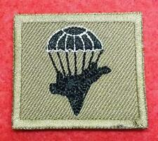 Chile Army Special Forces Free Fall Parachutist Para Jump qualification Patch
