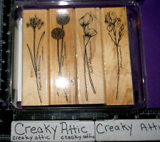 STAMPIN UP LONG STEMMED 4 RUBBER STAMPS IRIS CALA LILY NARCISSUS ALLIUM FLOWERS