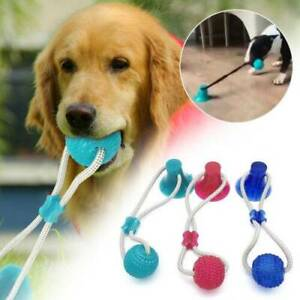 Pet Molar Bite Toy Multifunction Floor Suction Cup Dog Toy+Ball Elasticity Soft