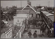 Kent County Library no 7 Lydd Station 1909, The Arrival of the horses Postcard