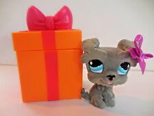 Littlest Pet Shop LPS Gray Fuzzy Schnauzer Dog 1006 Blue Eyes